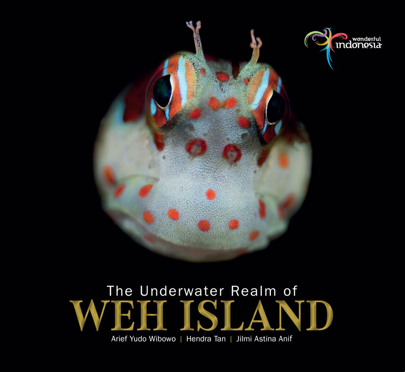 photodivetrip-WEH-ISLAND