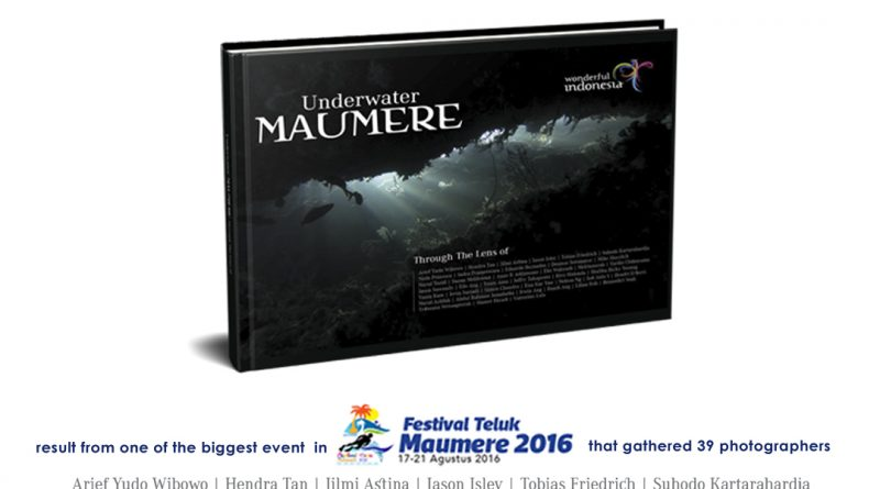 instagram_maumere_new_release